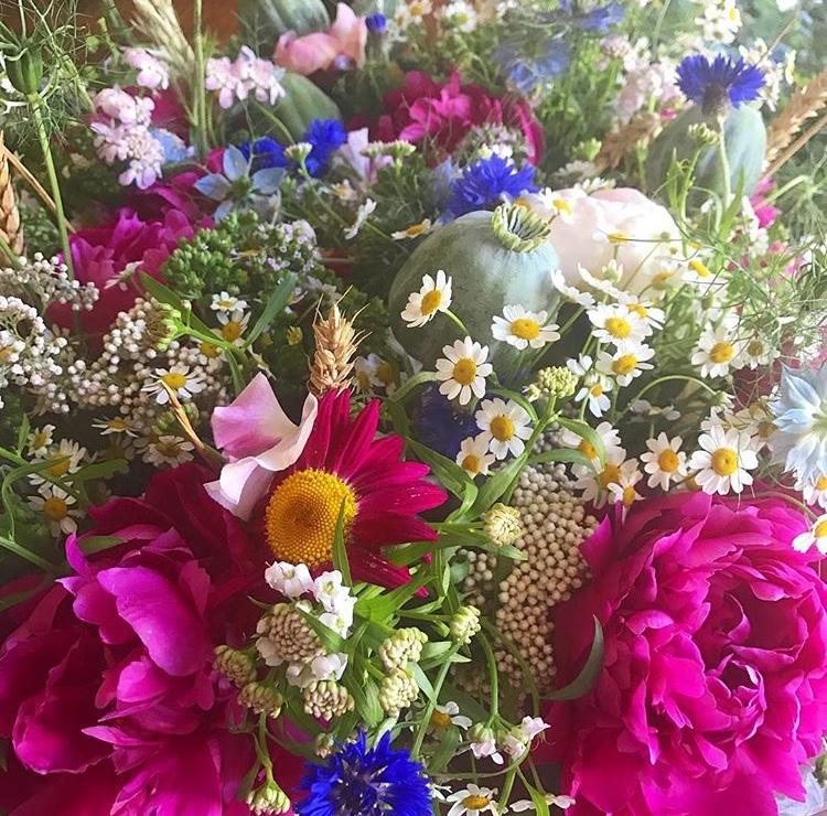 SummerFlowers_FlowersByDaisy