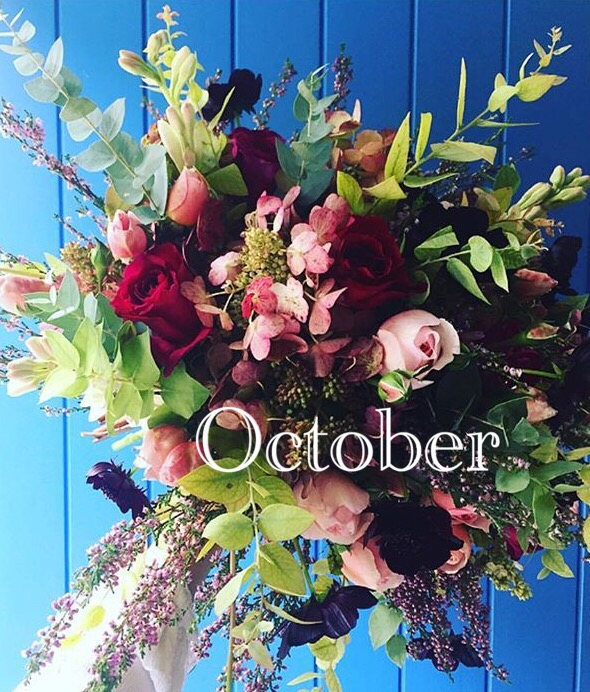 An A to Z of floral remedies, Flowers By Daisy newsletter October 2016.