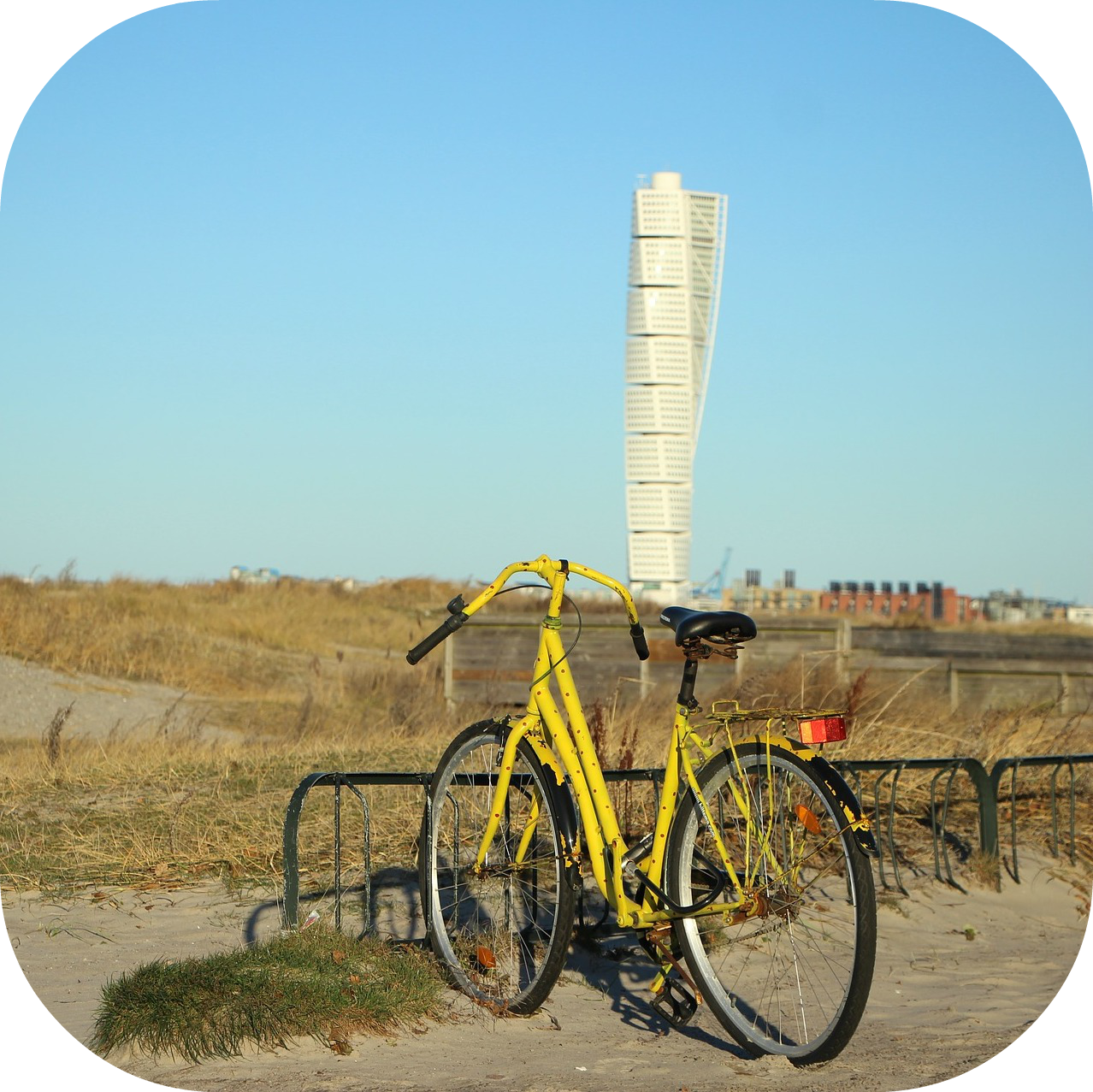 rounded_corners_bike_turning torso.png