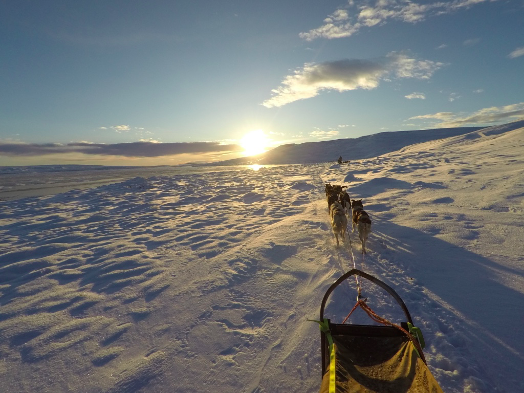 DOGGSLEDDING ALONG FROZEN LAKES AND THE ARCTIC TUNDRA - An unique experience combining activity, food and storytelling.