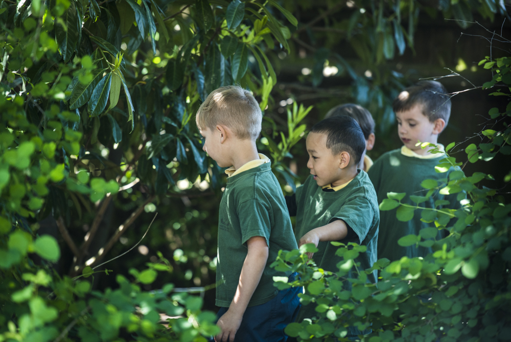 outdoorclassroomday2018_low-246.jpg