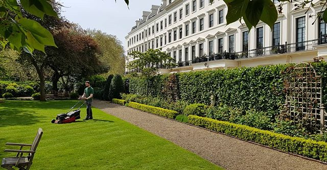 Matthew mowing the lawns today at Hyde Park Gardens