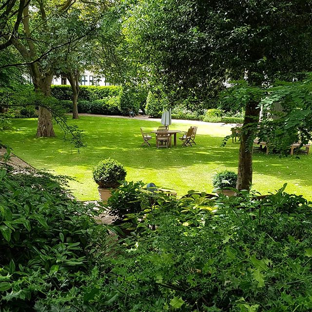 And a view of the garden we maintain, at Hyde Park Gardens