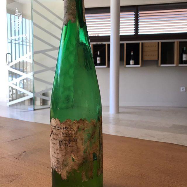 Estos días, colocando nuestra Bodega subterránea nos han aparecido tesoros como este.... Verdejo de 1997, que tras la friolera de 22 años en botella nos ha dejado sorprendidos por su color, olor e intensidad!!!! INCREÍBLE.#dorueda, #winelovers #matapozuelos #tesorosescondidos #verdejo #rutadelvinoderueda