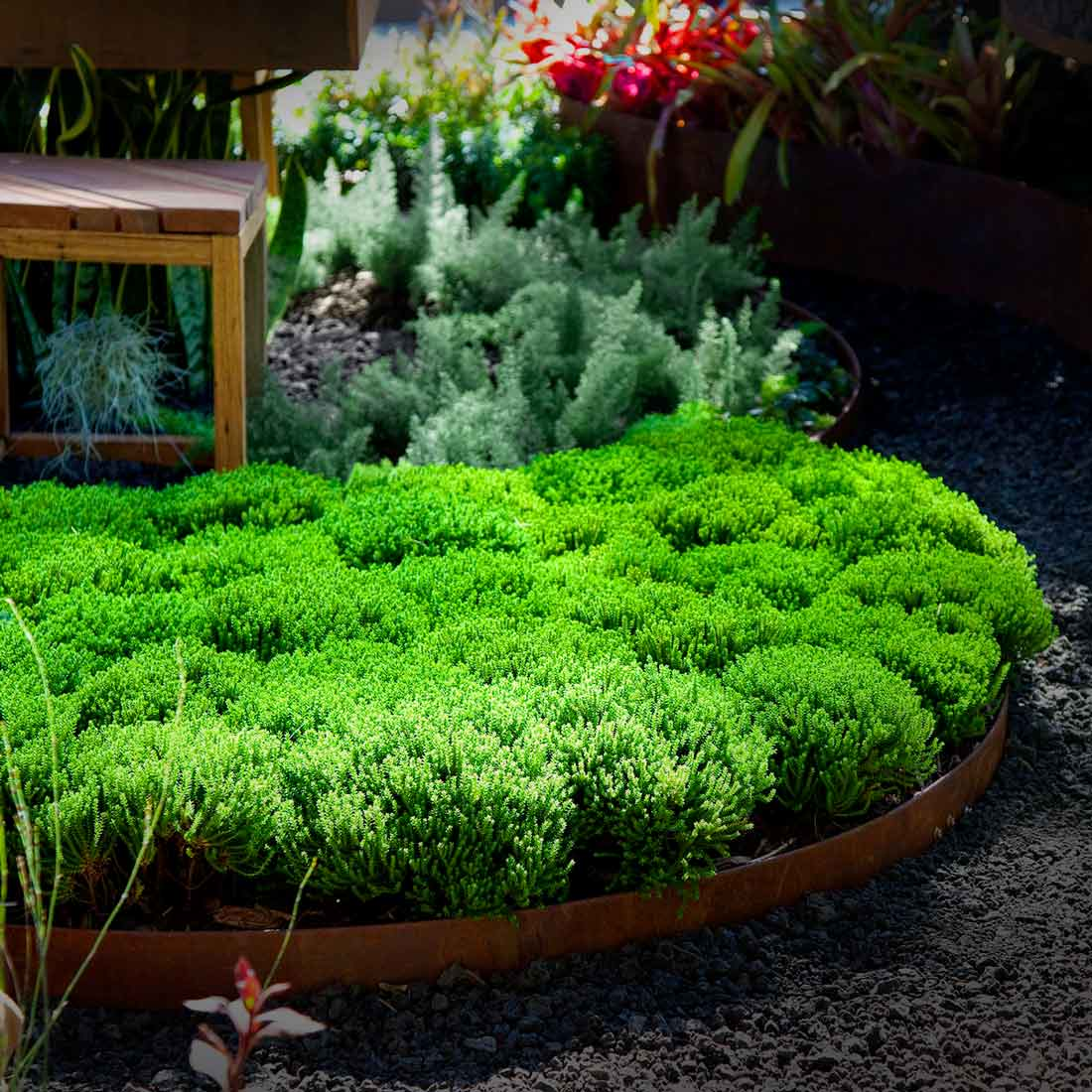 planting-design.jpg