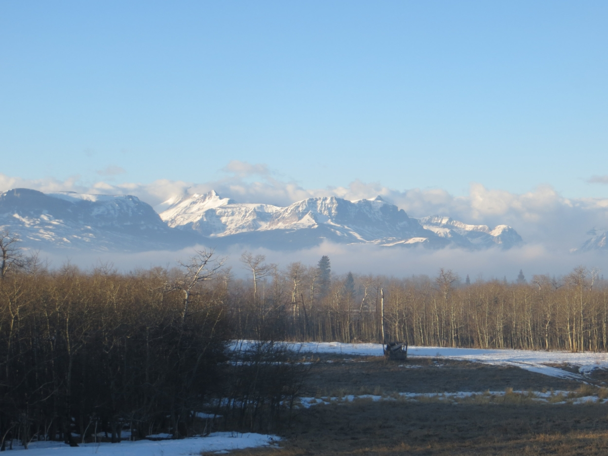 Mt. Wynn, center, and the long, long ridge approaching Siyeh on a spring morning