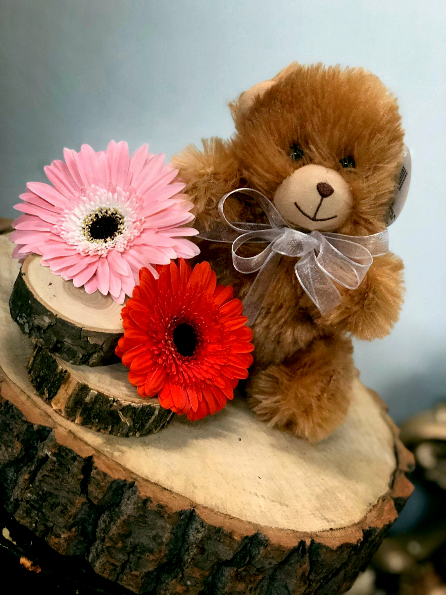 Stuffed Animals - Click Here To Learn More