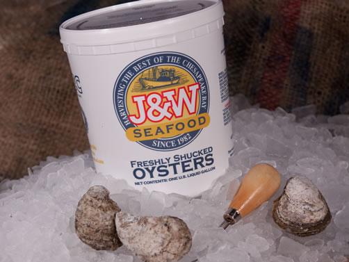 Fresh Shucked Oyster Gallon