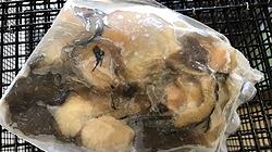 Frozen Clam Pack