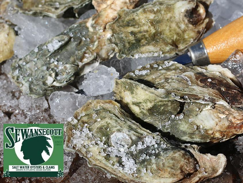 Sewasacott Oyster are a farm raised oyster raised on the Atlantic.  This oyster is popular with it high salinity.