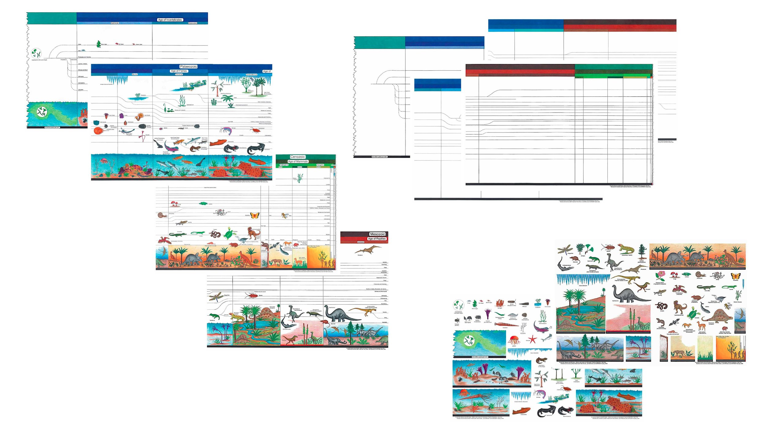 Timeline of Life Charts