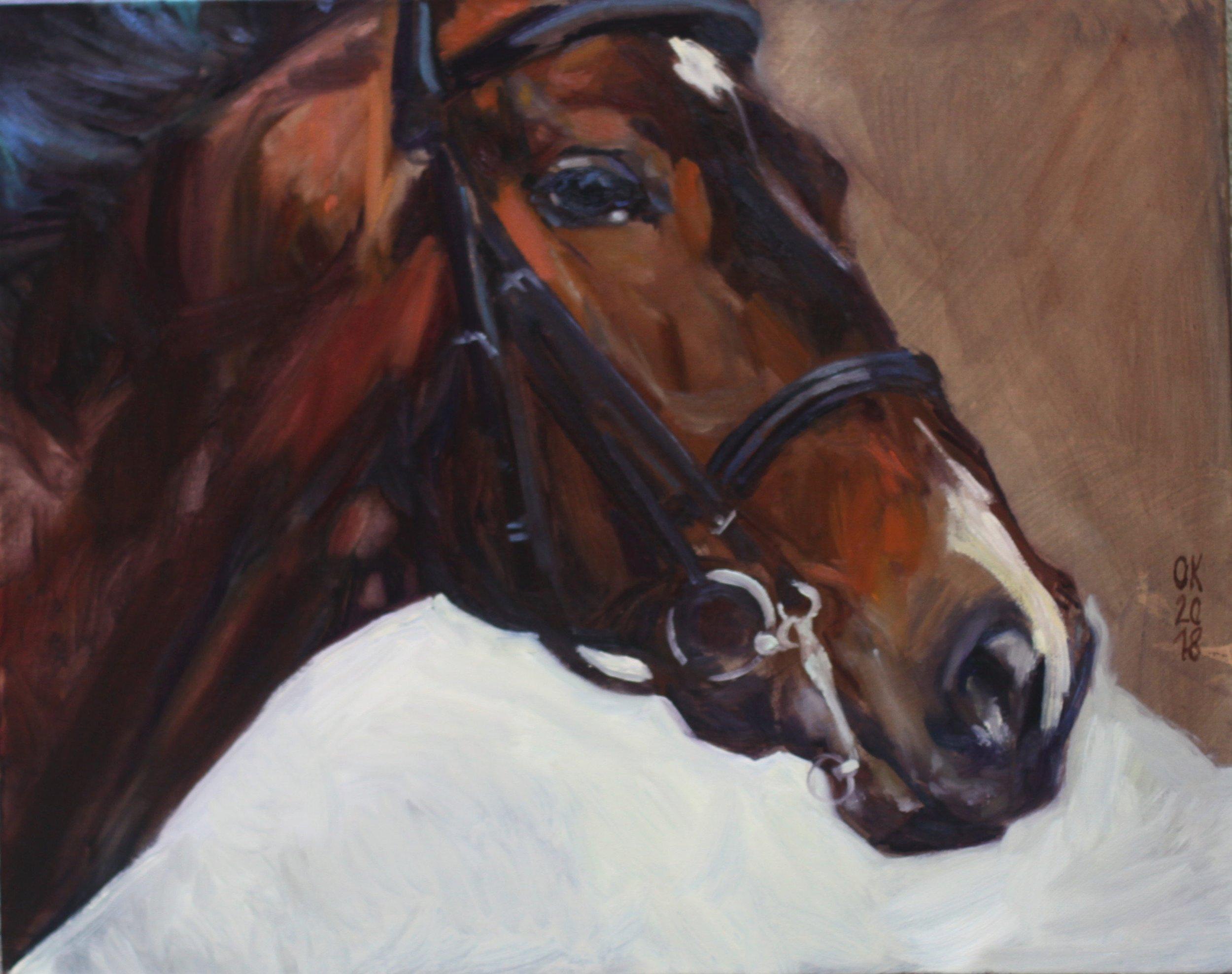 equestrian portrait -