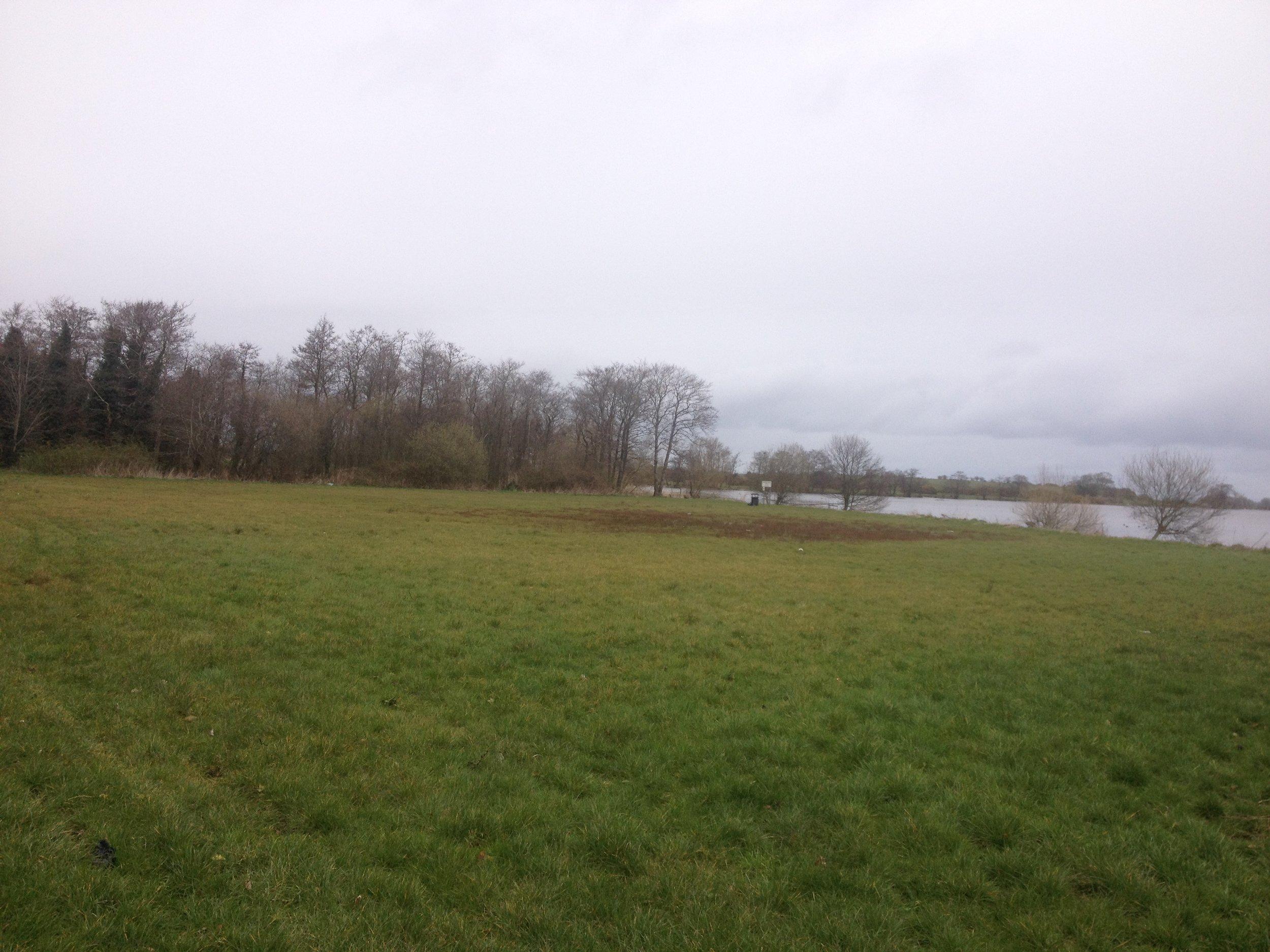 Grass Event Space.JPG