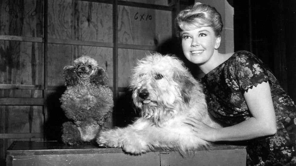 GTY-doris-day4-ml-170403_16x9_992.jpg