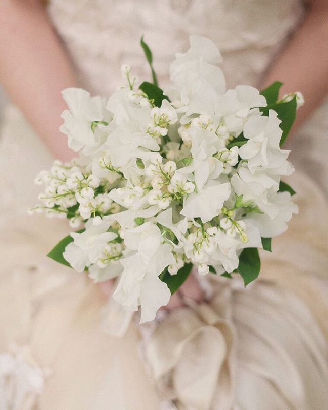 Is there anything sweeter than sweet pea? 🌸 ⠀⠀⠀⠀⠀⠀⠀⠀⠀ - ⠀⠀⠀⠀⠀⠀⠀⠀⠀ #bashevents #realwedding #luxurywedding #weddingadvice #weddingday #weddinginspiration #weddingdetails #weddingphotography #destinationwedding #dubaiwedding #abudhabiwedding #weddingforward #weddingblog #weddingexpert #pursuepretty #nothingisordinary #weddingplanning #dubaiweddingplanning #weddingplanner #weddinghelp #wedding #weddingstyling #modernwedding #tablescaping #tabledesign #hautecouture #dubaiweddingplanner #tabletopdesign #tabletoprentals #weddinginspiration