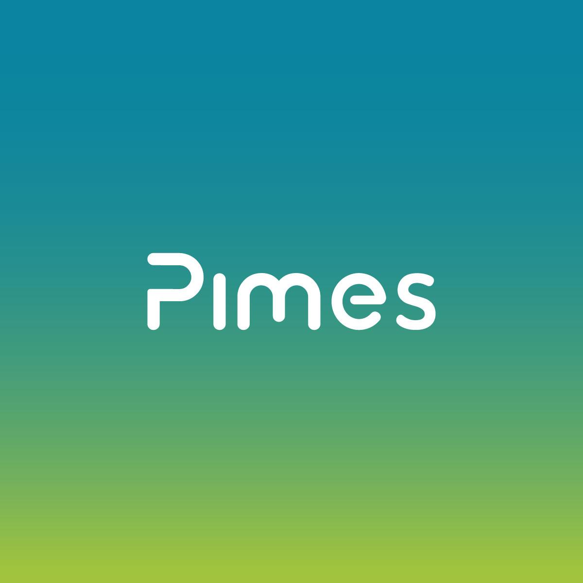 square_pimes.jpg