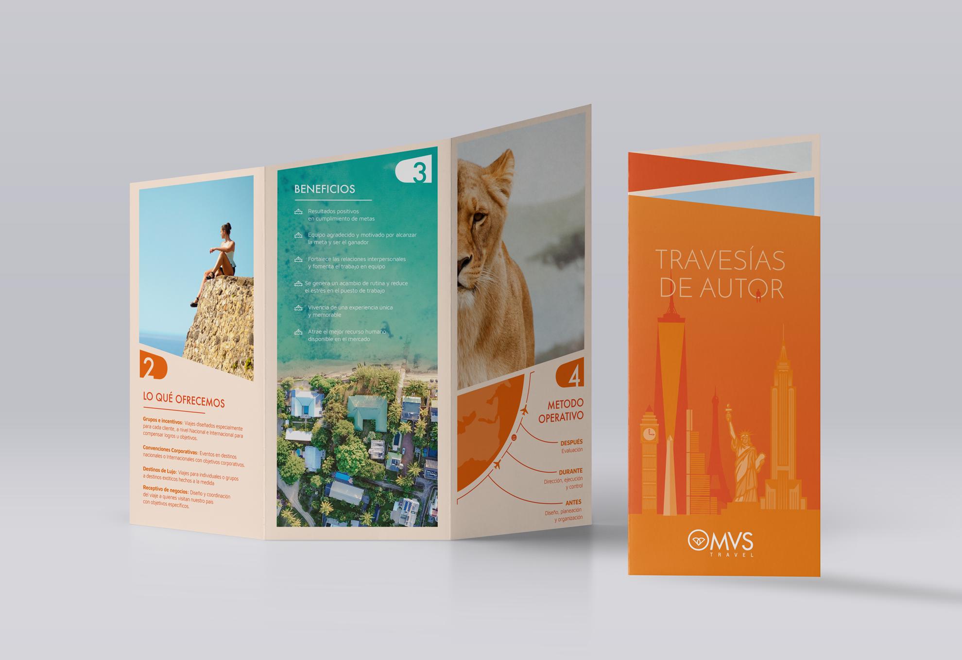 Mock_UP_Brochure_MVS.png