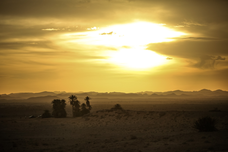 awstudio_tim_sutton_nissan_global_morocco_42.jpg