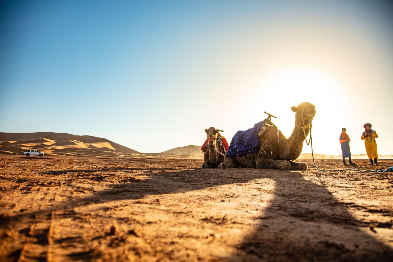 awstudio_tim_sutton_nissan_global_morocco_50.jpg