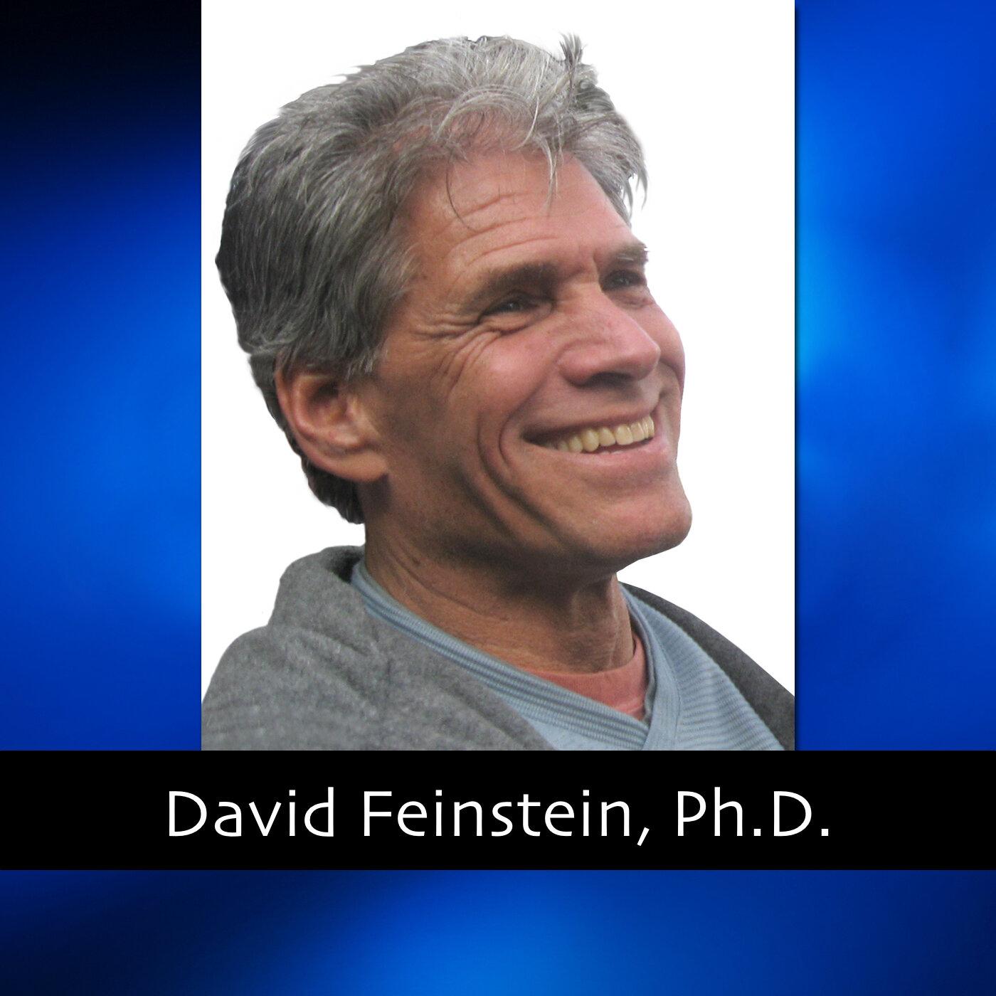 David Feinstein thumb.jpg