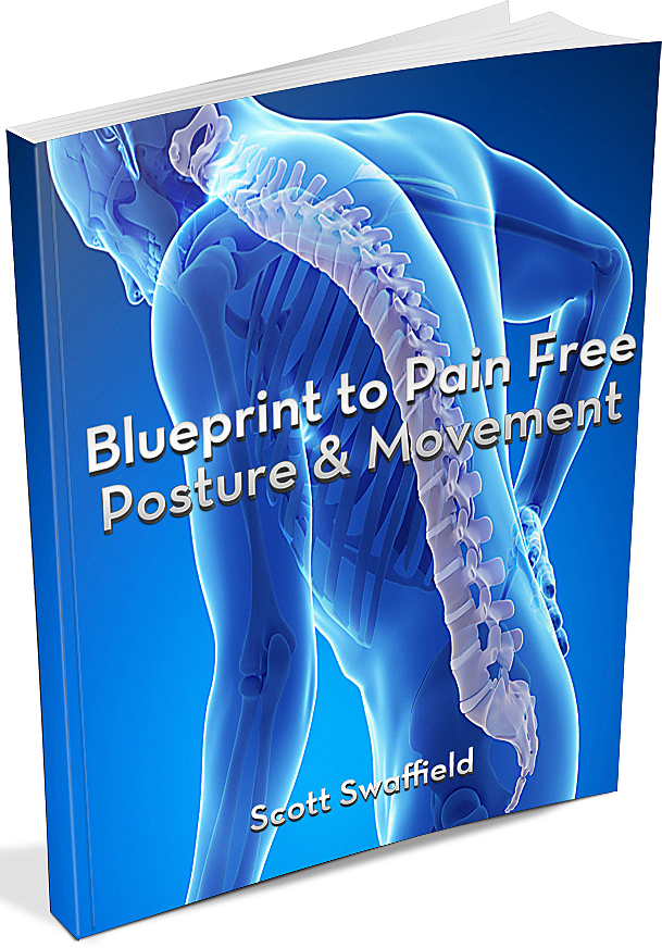 blueprint to pain free movement and posture ebook online personal training