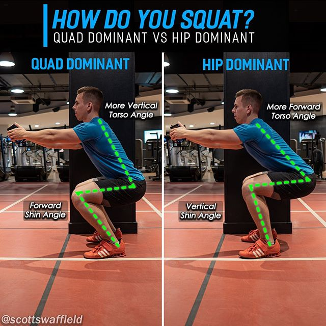 """🔹Quad Dominant VS Hip Dominant Squats🔹 ⠀⠀⠀⠀ What does the perfect squat look like? Does the torso need to be upright? Do the knees have to stay back behind the toes? You may be surprised to hear that none of this is true. Instead of being concerned about what the """"perfect"""" squat is instead ask yourself what the ideal squat is for your limb and torso lengths, previous injuries, and mobility. Your squat may look either more quad dominant or hip dominant. ⠀⠀⠀⠀ A quad dominant squat requires more ankle mobility (helped by Olympic shoes) and is typically favoured by those with shorter femurs and longer torsos. Where as hip dominant squatters tend to have reduced hip mobility, longer femurs and shorter torsos. ⠀⠀⠀⠀ Regardless of your unique circumstances that dictate the look of your squat, the end goal will always be to maintain the weight balanced over the mid foot, which is where barbell positioning (future post) can come into play. A high bar position set on the upper traps will allow for a more vertical torso, and a low bar position set on the rear delts will typically display a greater forward lean with the torso. ⠀⠀⠀⠀ If you don't already know how you squat, record a video of yourself and see what type of squat you favour. ⠀⠀⠀⠀ Hope this helps you out, don't forget to share with a friend who would appreciate this 💪 ⠀⠀⠀⠀"""