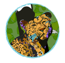 Leopard_Book and Cards.png