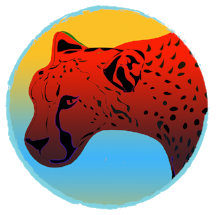 cheetahbluecircle.png