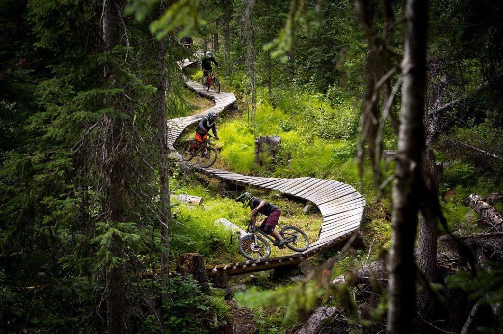 Downhill Biking BC.jpg