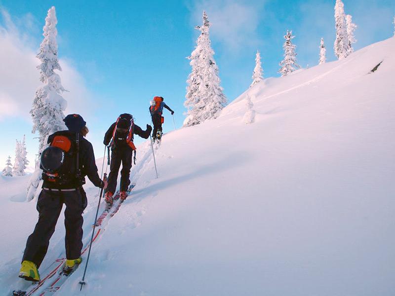 alpine-ski-touring-skinning-up-nelson-bc.jpg