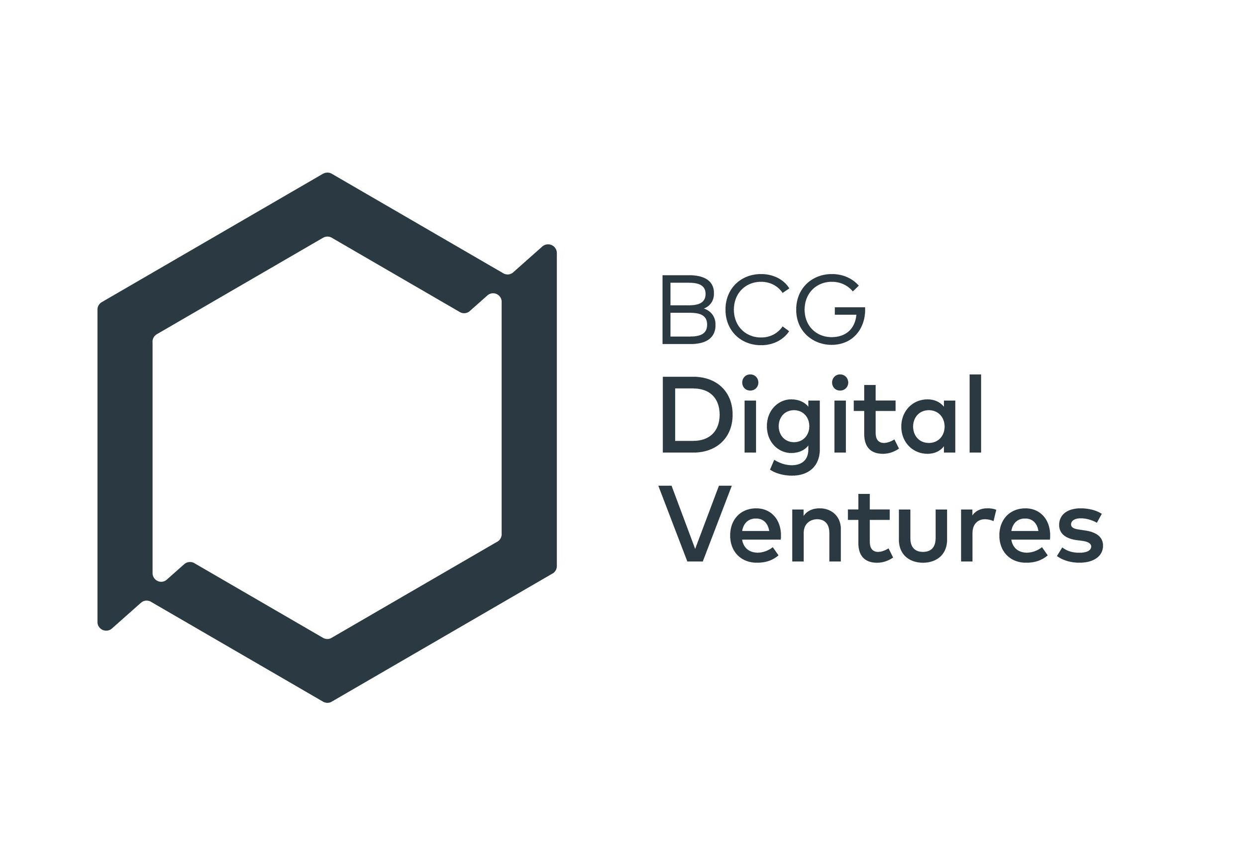 bcg-digital-ventures_owler_20160922_210453_original.jpg
