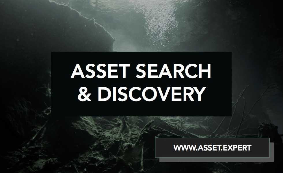 Comprehensive asset search and investigation for litigation, settlement negotiations, judgment enforcement and probate administration. -