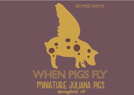 when-pigs-fly-web.png