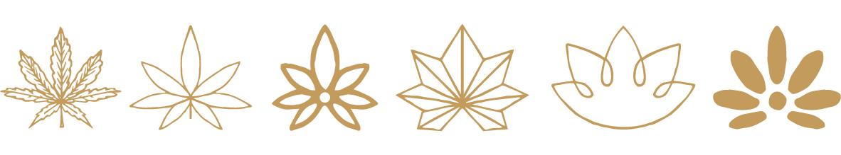 Evolution_Pot_Logo-01.jpg