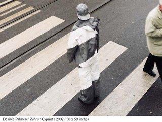 camouflage9.jpg