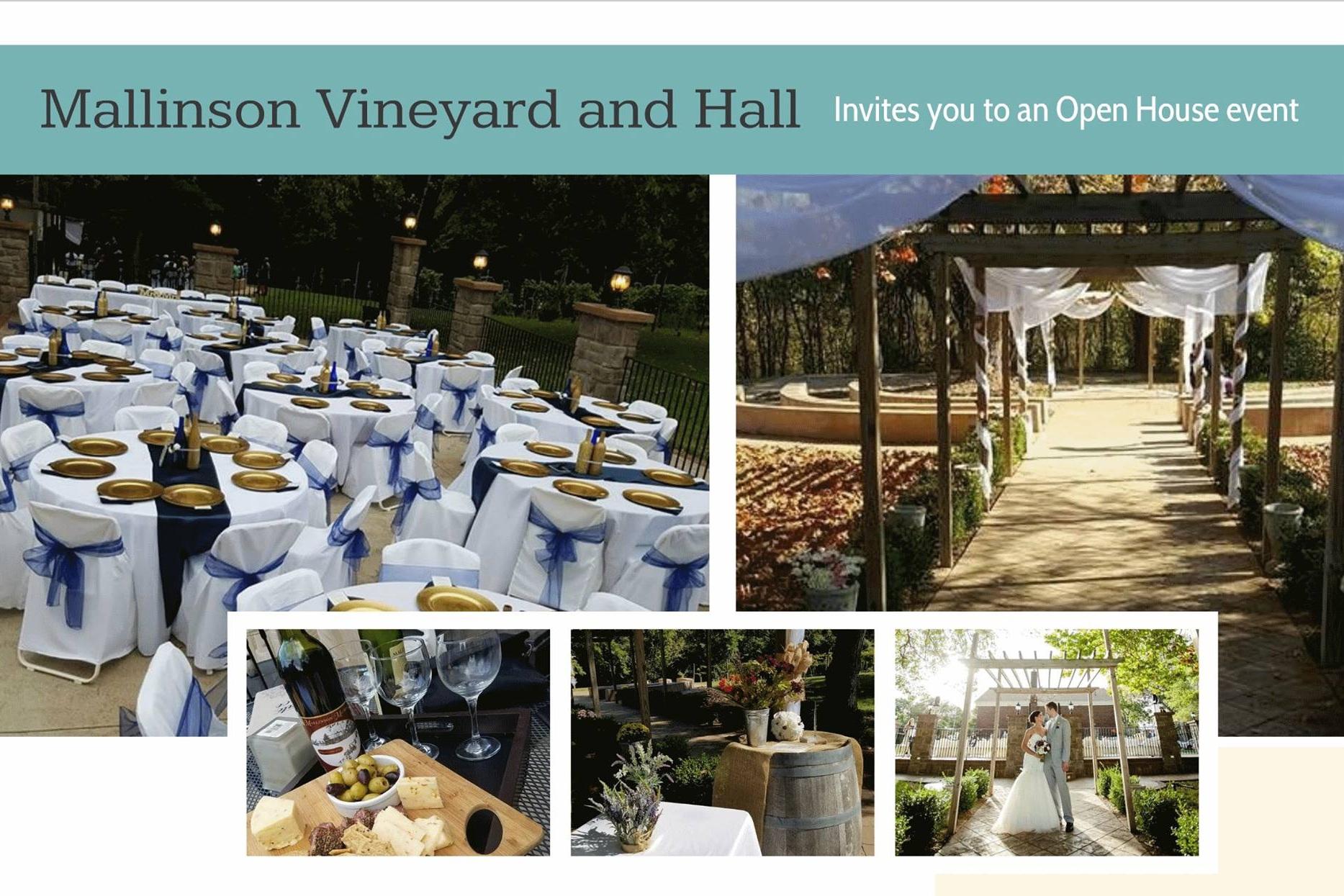 Mallinson+Vineyard+and+Hall+Open+House+-+Sugar+Creek+MO+-+Independence+MO.jpg