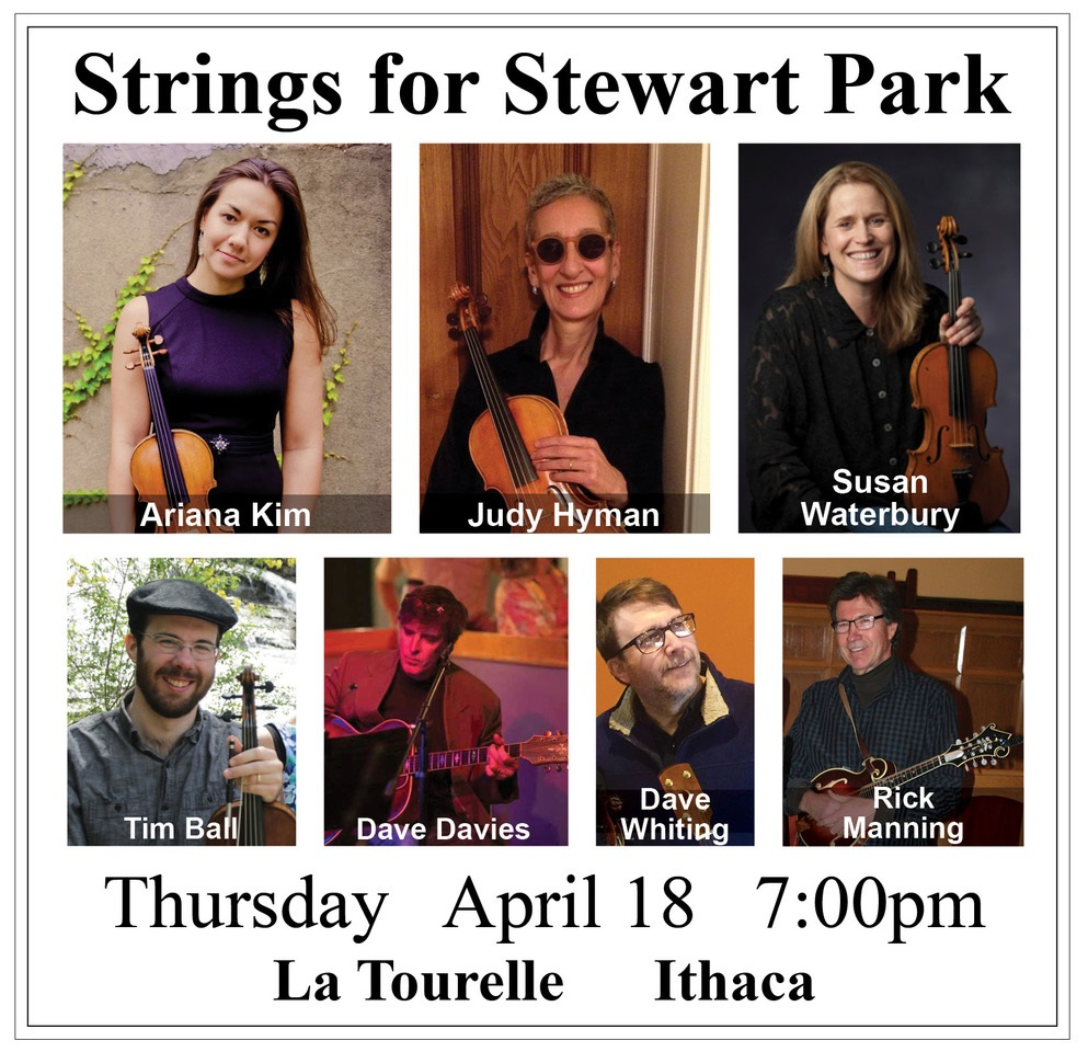 Strings For Stewart Park Poster 7pm high res.jpg