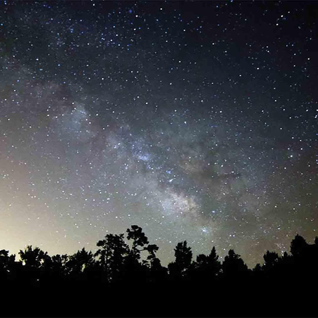 charleston-inside-out-lowcountry-stargazers-astronomy-night.jpg