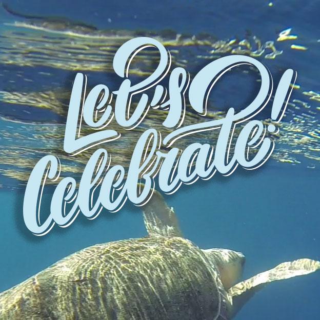 World Turtle Day. SC Aquarium. May26-27