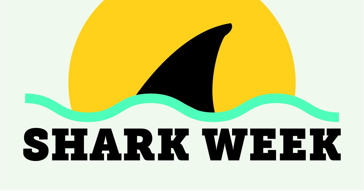 "A whole week of ""jawsome"" activities for Shark Week at the South Carolina Aquarium."