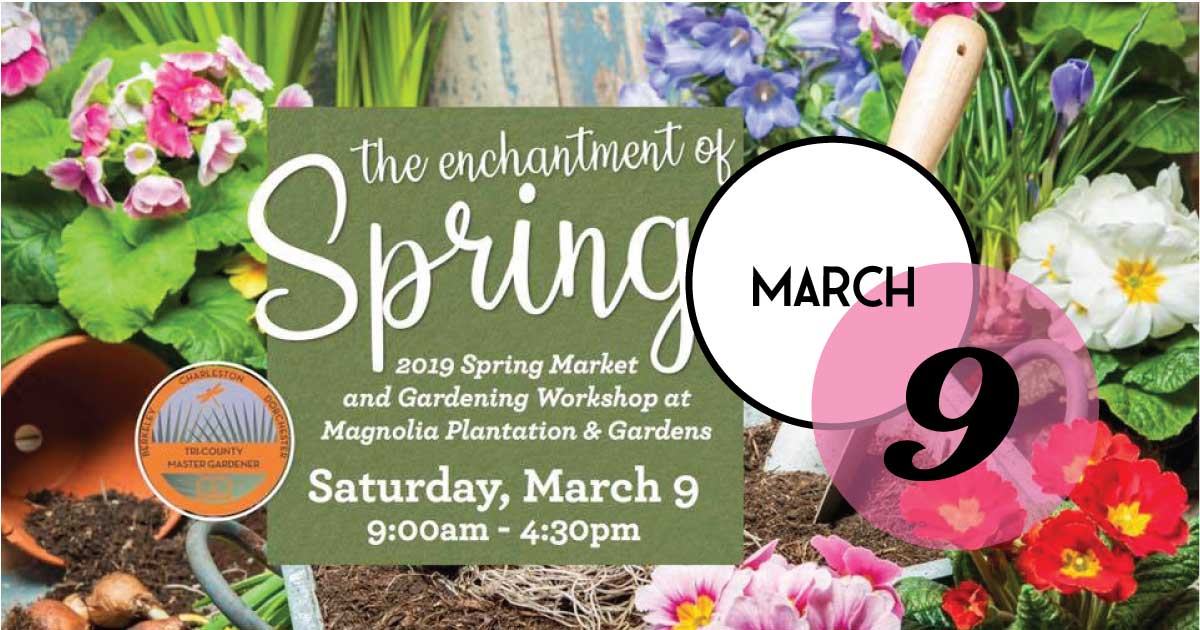 Come celebrate the 2019 Spring Market and Symposium at Magnolia Plantation and Gardens with garden workshops, demonstrations, a market, and plant sale. Learn tips and shop for local food and artisan products and take home the perfect plants for your home or garden
