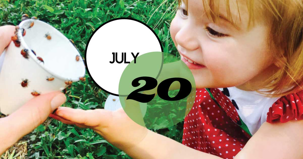Magnolia Plantation & Gardens invites Lowcountry families to participate in our 6th Annual Ladybug Release! On Saturday, July 20th, 200,000 ladybugs will be released in the gardens to help control other small, more harmful insects such as aphids and scale insects.