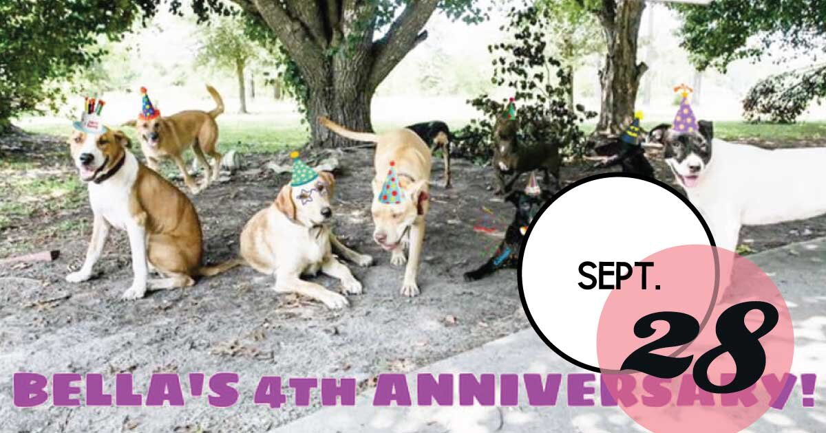 Bella's Tail Waggin' Rescue is having a 4th birthday party and adoption event at Out of Hand in Mount Pleasant! Shop, adopt a dog and sign-up for the raffle.