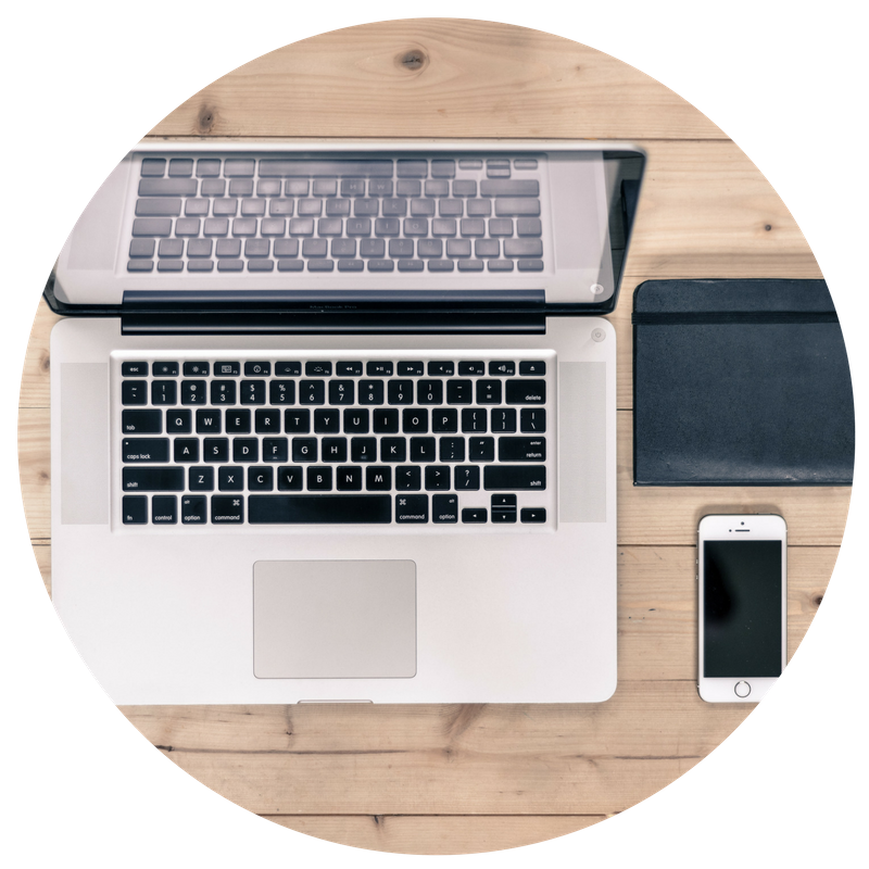 social media and website management services consultant-the sow collective