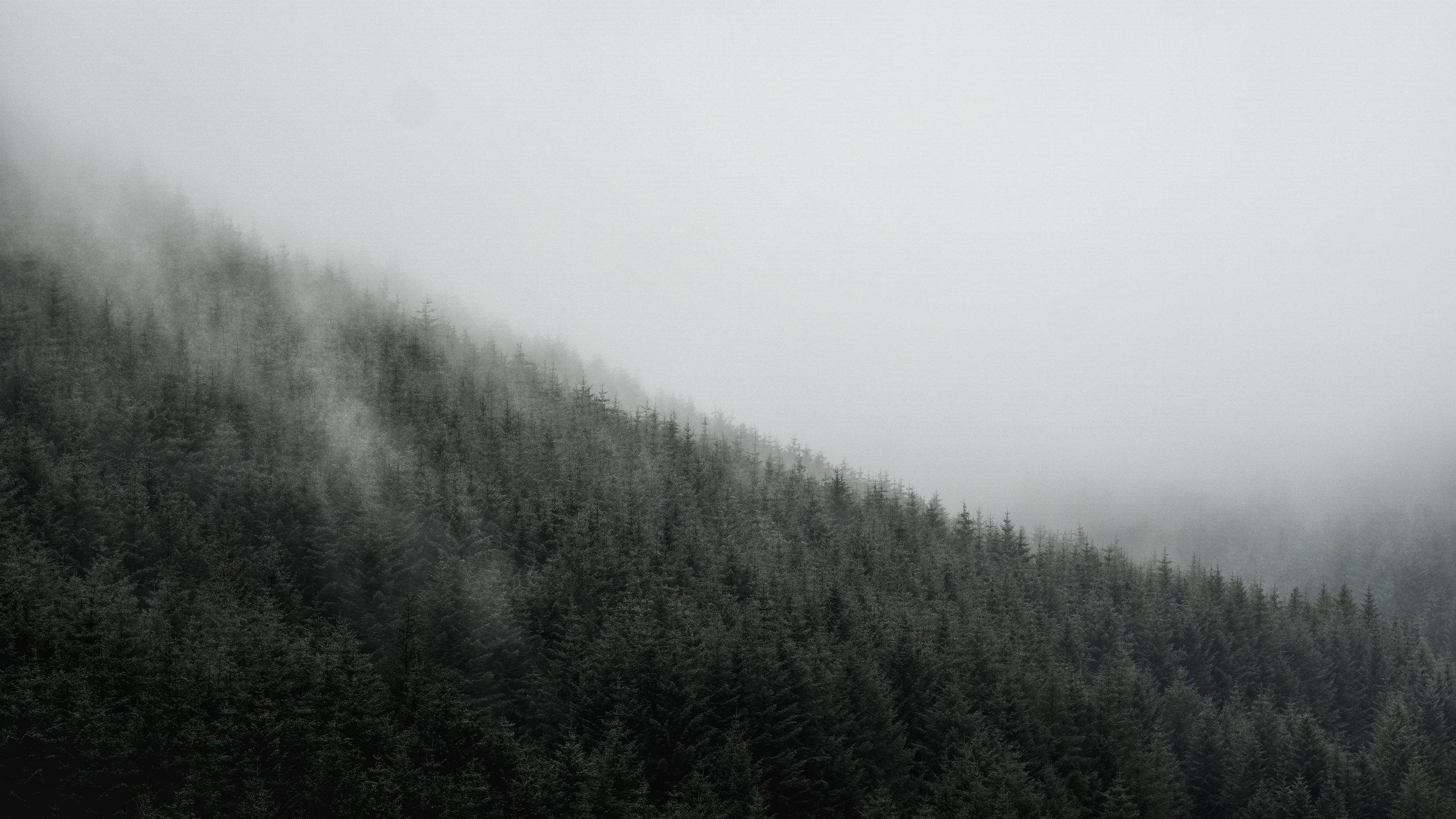 'Land of Fog; Monamore Glen'
