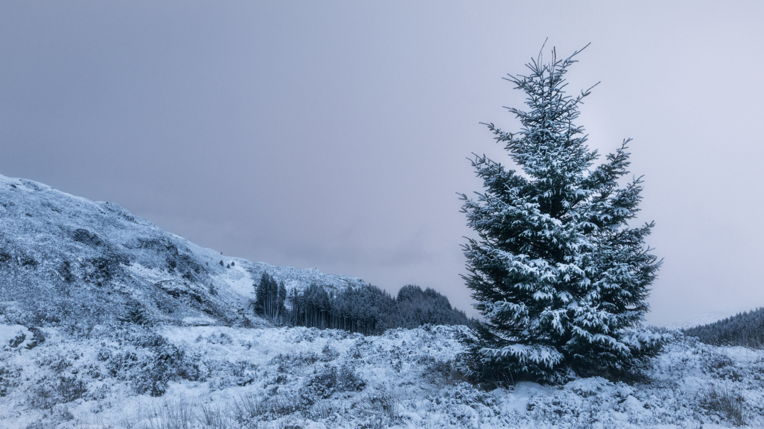 'A Light Dusting'