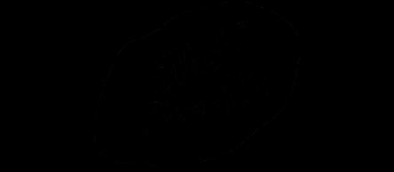 logo_SlickSleuth.png