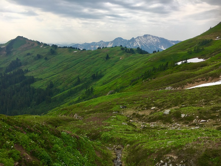 Looking back at White Pass