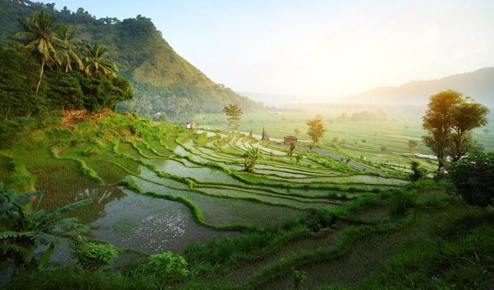 24-hours-Bali-722x424.jpg