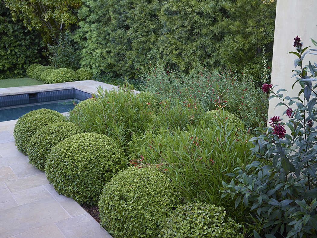 Accent Planting Photography: Marion Brenner